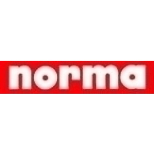 NORMA .375H+H Mag. BarnesSolid 19,4g
